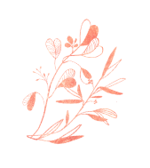 demo-attachment-244-flower-title-7
